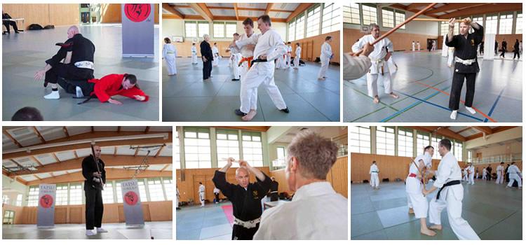 Традиционный семинар по дзю-дзюцу и кобудзюцу 2015